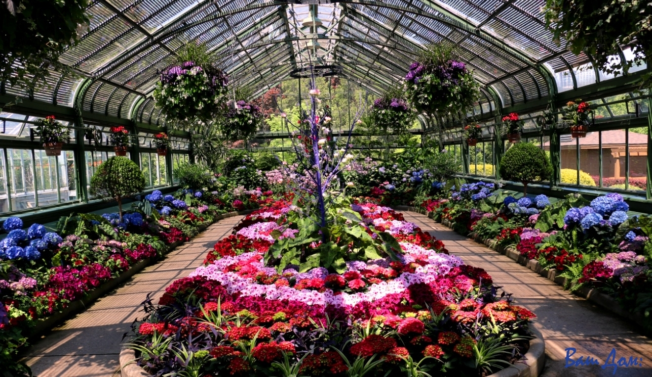 Niagara Parks Floral Showhouse IMG_8514